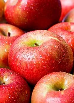 吃蘋果窈窕又健康