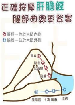 正確按摩肝膽經讓腿部曲線更緊實